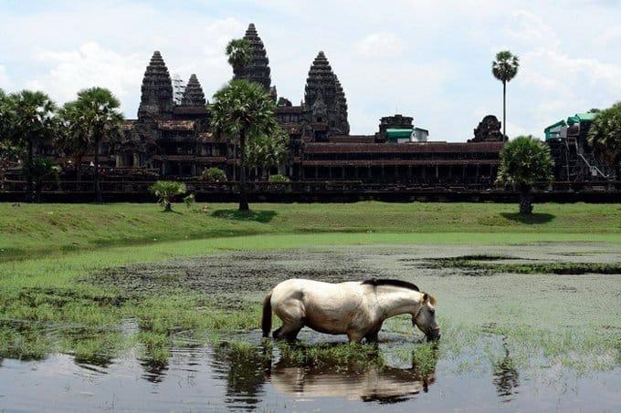 В Камбодже начали строить первый православный храм
