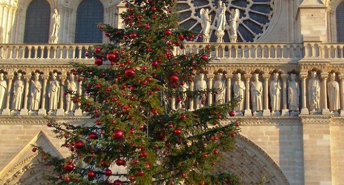 Парижане встретят Рождество с елкой благодаря москвичам