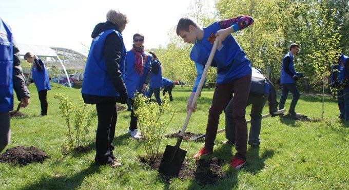 В честь погибших в Великую Отечественную в Москве высадят деревья