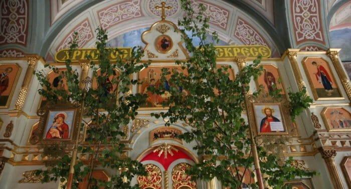 Троицкие березы. Фото