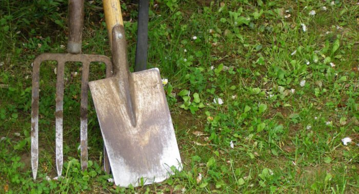 Грех ли от Вербного до Пасхи сажать огород?