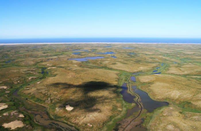 Арктика лето. Фото священника Димитрия Лукьянова
