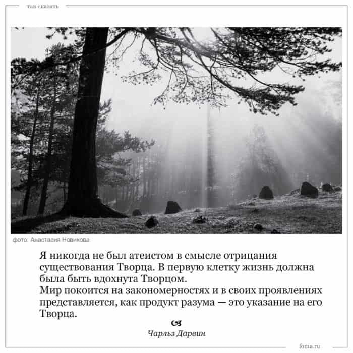 n14_takskazat_5