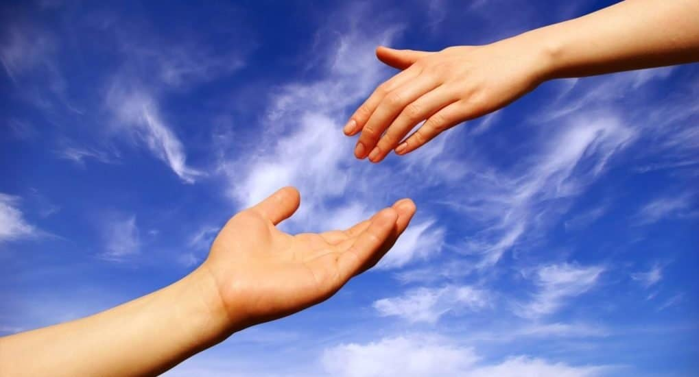 Более 100 тысяч рублей собрано за первый день совместной благотворительной акции «Фомы» и фонда «Мои Друзья»