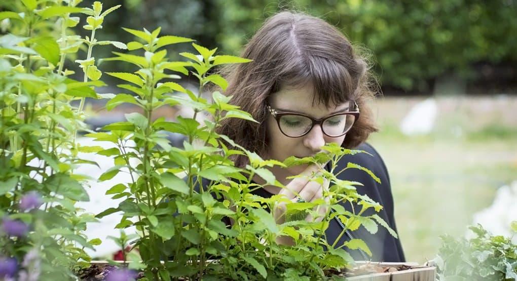 Первый в стране сенсорный сад для слепоглухих открывается в Москве