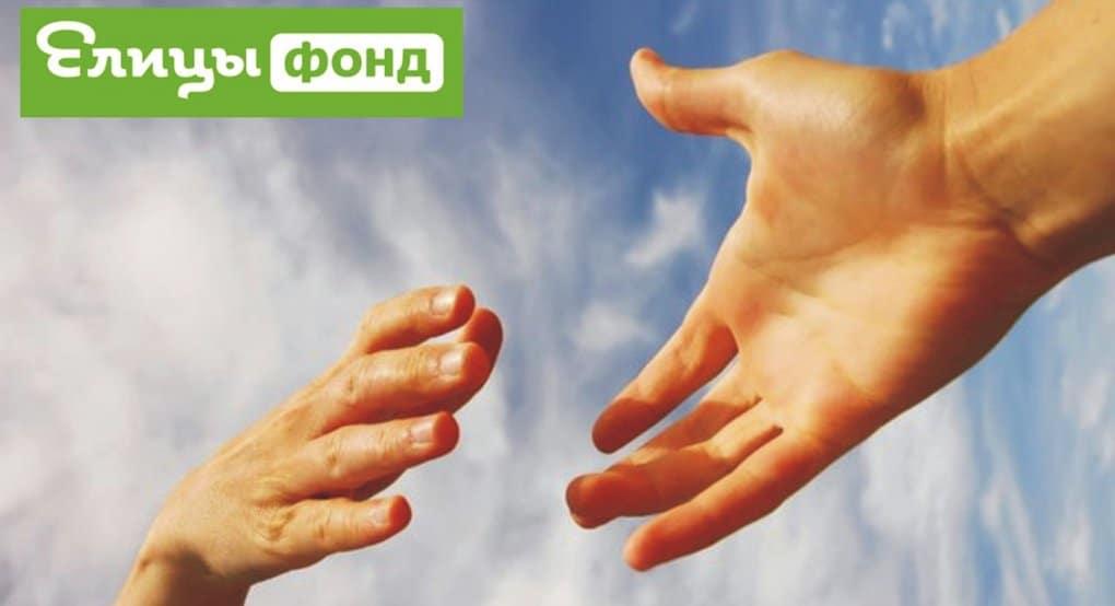 Православная соцсеть «Елицы» открыла Фонд помощи нуждающимся