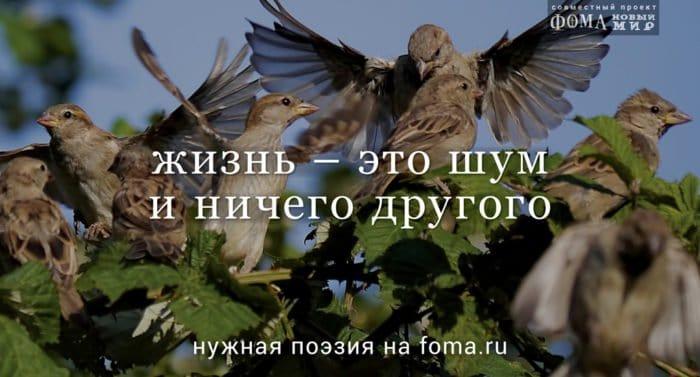 Олег Чухонцев. Ясным утром