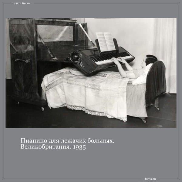 Так и было: снос памятника Александру III, Ахматова делает гимнастику и 28 собак Павлова