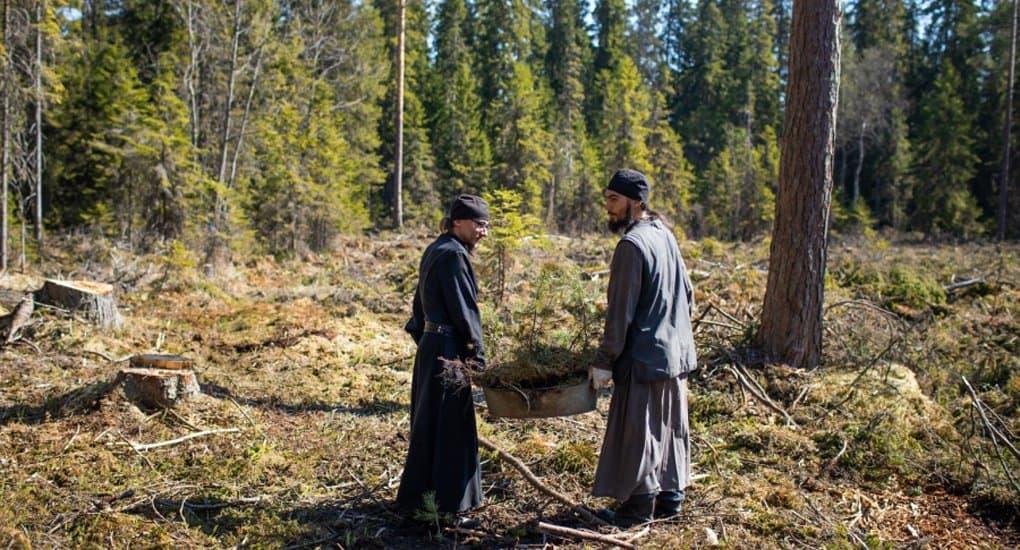 Патриарх Кирилл призвал комплексно восстанавливать леса Валаама