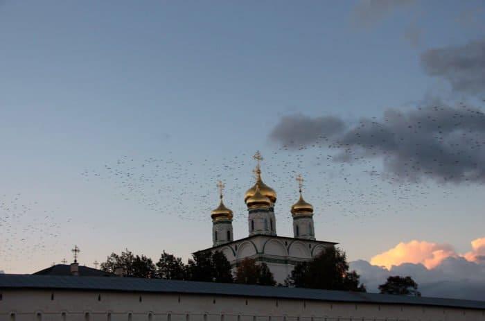 7 тысяч человек посетили фестиваль «Волоколамский творожный день» за минувшие выходные
