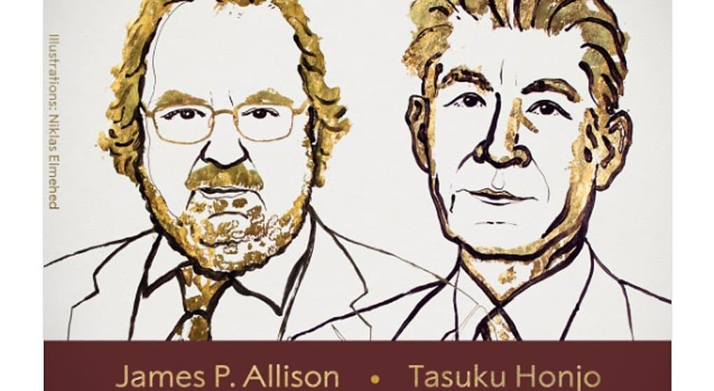 Нобелевскую премию 2018 года по медицине дали за новый метод иммунотерапии рака