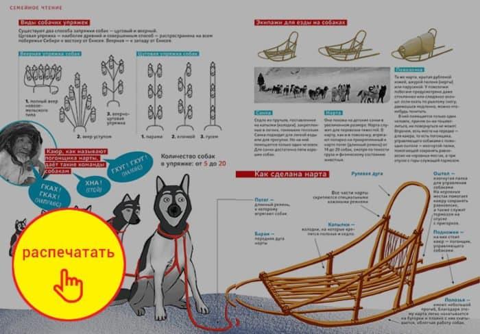 Нарты для апостола: Как Иннокентий Московский всю Сибирь на собаках объездил