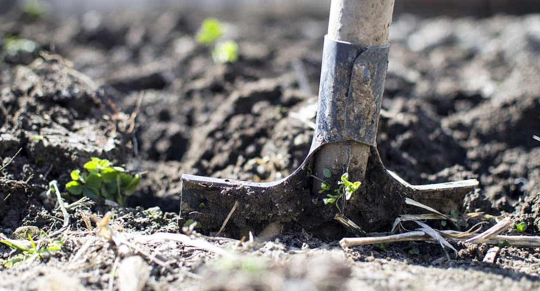 Можно ли копать огород на Радоницу?