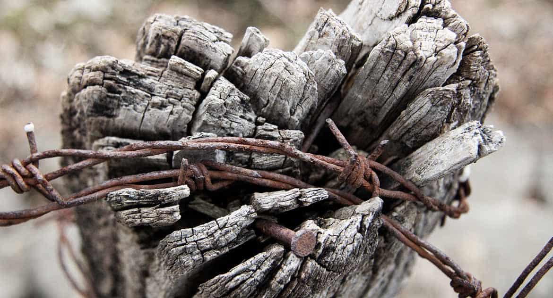 Почему Бог наказывает людей за грехи, хотя Сам сотворил их склонными к нему?