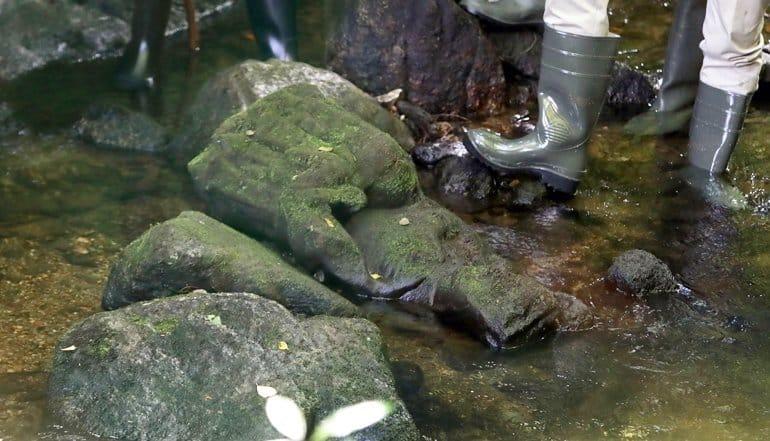 Испанский рыбак случайно нашел в реке статую Богородицы XIV века