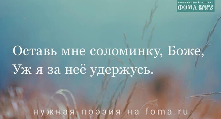 Поэзия Владимира Бережкова: Оставь мне соломинку, Боже...