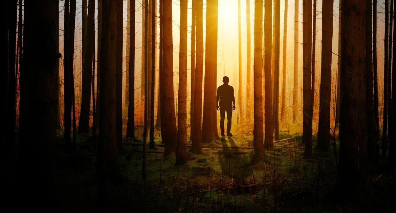 Адам— это человек или все человечество?