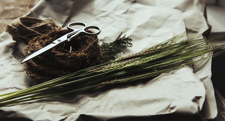 Как Церковь относится к заговорам?