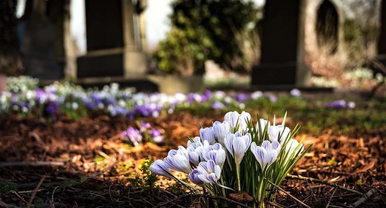 Можно ли в Святки ходить на кладбище?