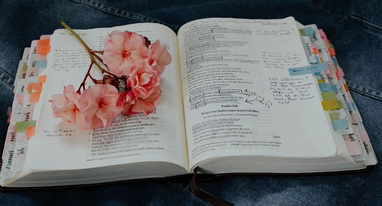 Не только Православная Церковь, но и многие секты используют Библию для обоснования своей правоты. Как разобраться, како...
