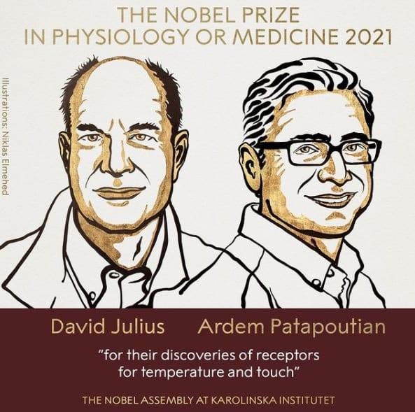 Нобелевскую премию по медицине присудили за изучение рецепторов, чувствующих температуру