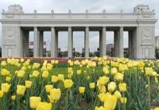 Выставка семейных фотопортретов открылась в столичном парке Горького